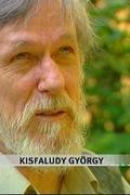 Kisfaludy György