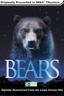 Medvék (Bears)