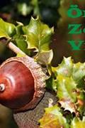 Örök- Zöld- Világ