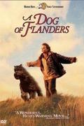 Kivert kutya (A Dog of Flanders)