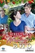 A fergeteges szenteste (A Christmas Wedding Date)