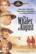 Bálnák augusztusban (The Whales of August)