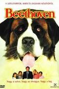 Beethoven (a film)