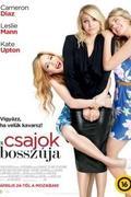 Csajok bosszúja (The Other Woman)
