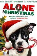 Reszkessetek kutyaütők! (Alone for Christmas)