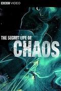 A káosz titkai (The Secret Life Of Chaos)