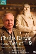 David Attenborough - Darwin és az élet fája (Charles Darwin and the Tree of Life)