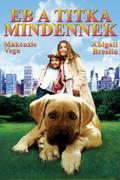 Eb a titka mindennek (Chestnut: Hero of Central Park)