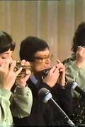 Mendes Raul szájharmonika trió
