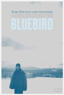 Kékmadár ( Bluebird) 2013.