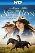 A remény vágtája (Midnight Stallion)