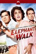 Elefántjárat (Elephant Walk)