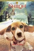 Csavargó kutya (Shiloh)