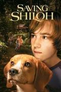 Csavargó kutya 3. (Saving Shiloh)