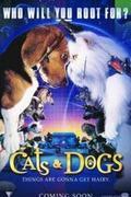 Kutyák és macskák (Cats & Dogs)