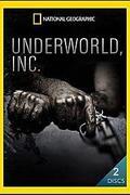 Alvilág Kft. (Underworld Inc.)