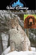 Lefty, a kelekótya hiúz (Lefty, the Dingaling Lynx)