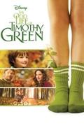 Timothy Green különös élete /The Odd Life of Timothy Green/