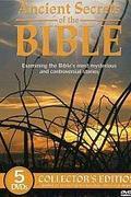 Bibliai csapások