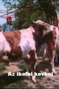 Az ibafai kovboj