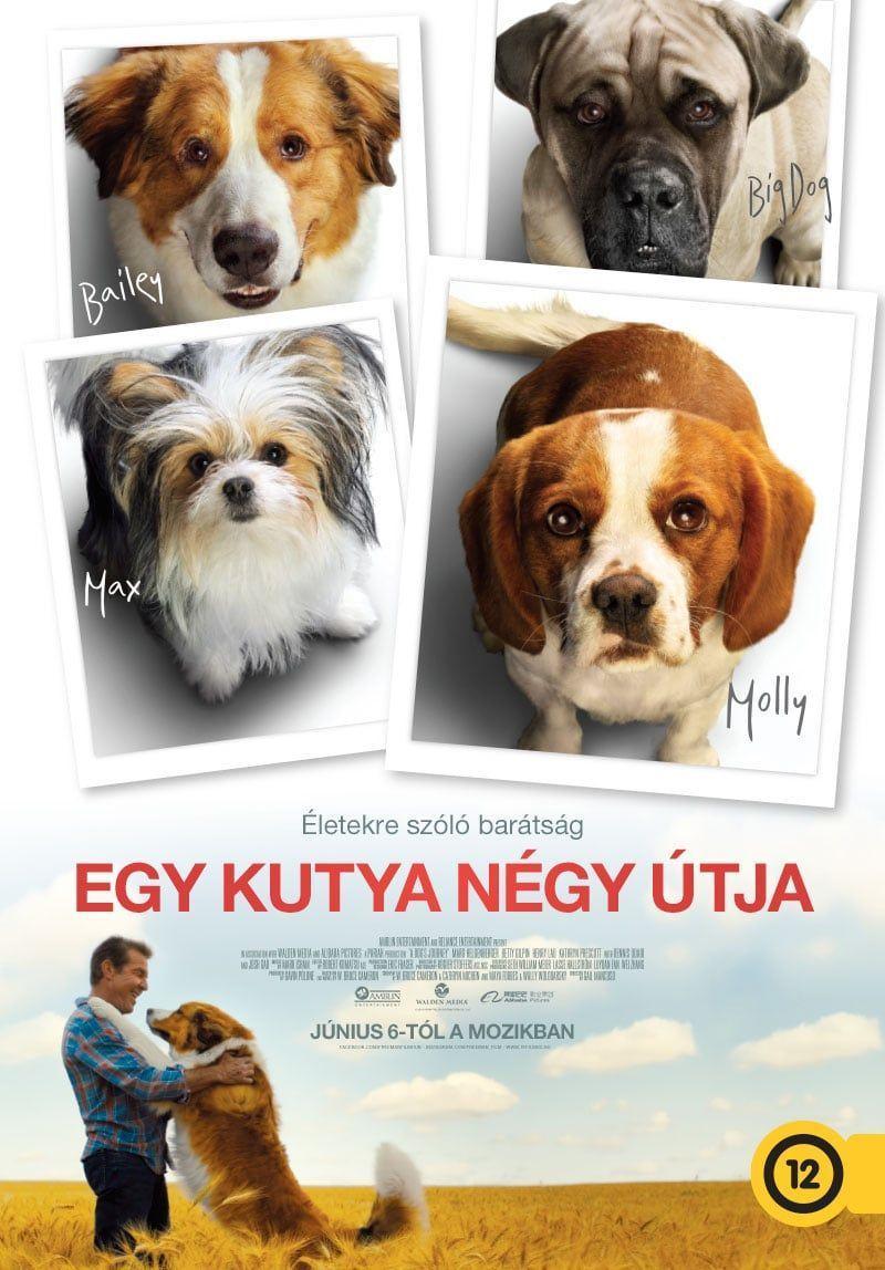 Egy kutya négy útja /A Dog's Journey/