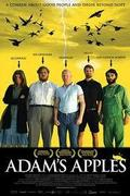 Ádám almái (Adams aebler)